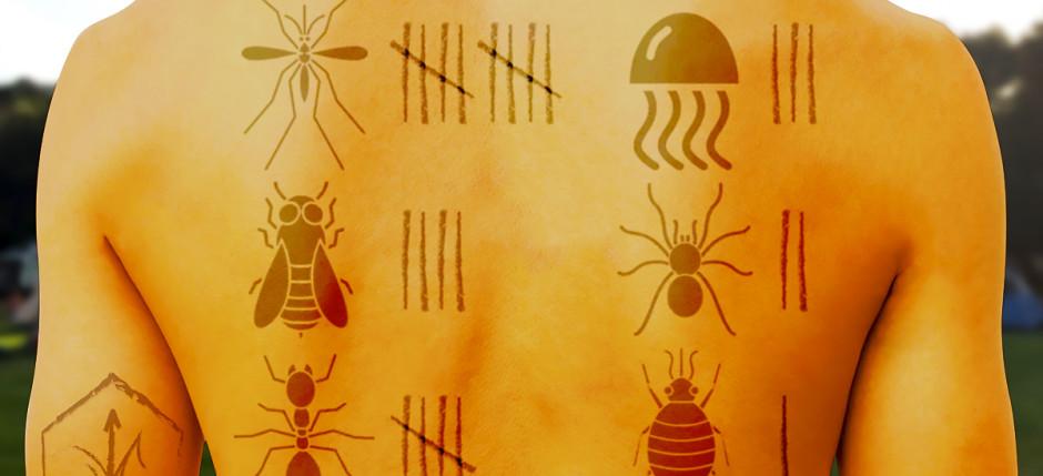 ¡Alerta con las picaduras de insectos! y sus posibles reacciones alérgicas